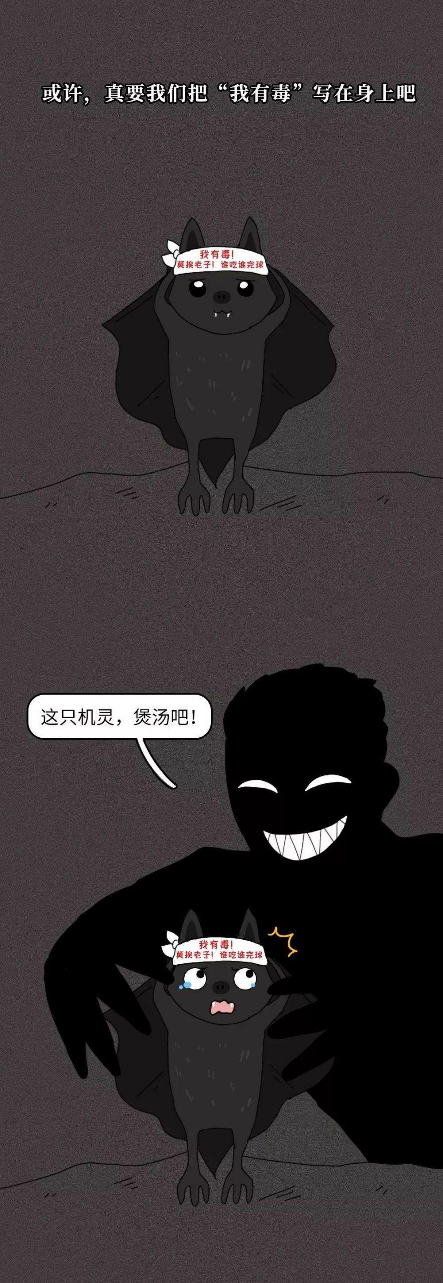 战役!一只蝙蝠的自述在朋友圈火了!